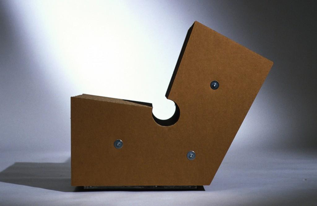 Max Cardboard side